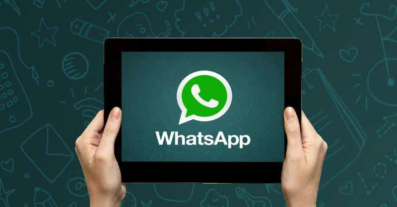 WhatsApp su iPad e iPad Mini