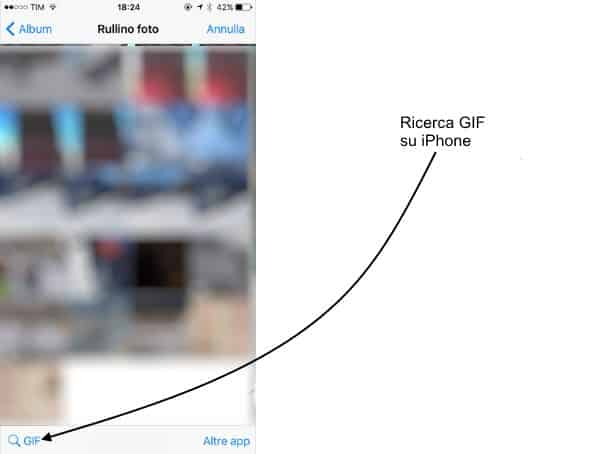 ricerca gif whatsapp su iPhone